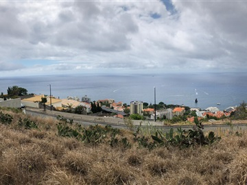 Lote / Funchal, Barreiros