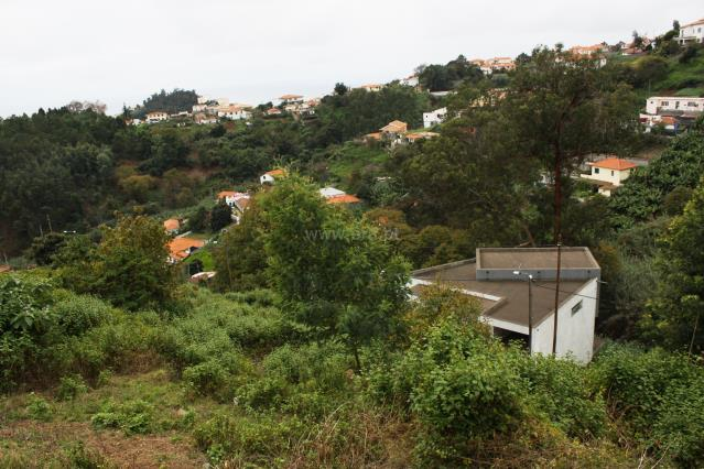 Lote / Funchal, Santo António